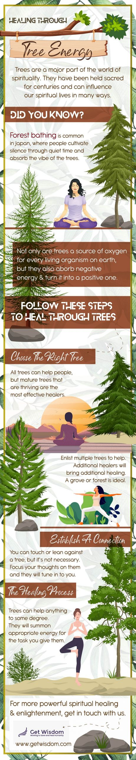Trees are a major part of the world of spirituality. They have been held sacred for centuries and can influence our spiritual lives in many ways.