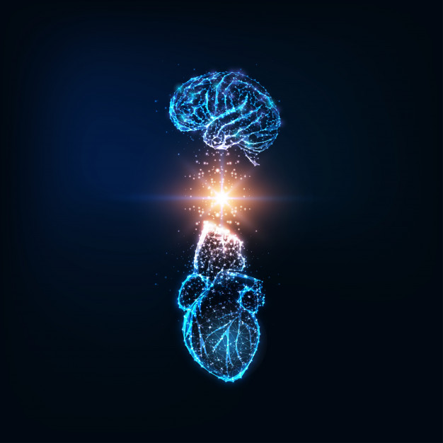 An abstract depiction of a brain and heart's symbolic connection